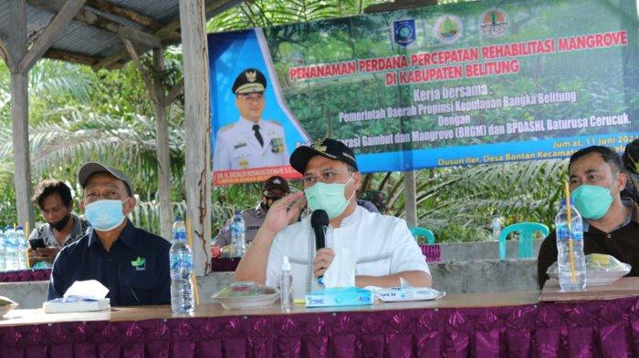 Pastikan Tepat Guna, Kucuran Dana Rp10 Miliar Rehabilitasi Mangrove Ditinjau Gubernur