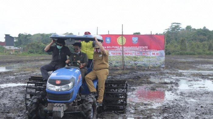 Menteri Pertanian RI Tanam Padi Pertama di Persawahan Desa Batu Betumpang