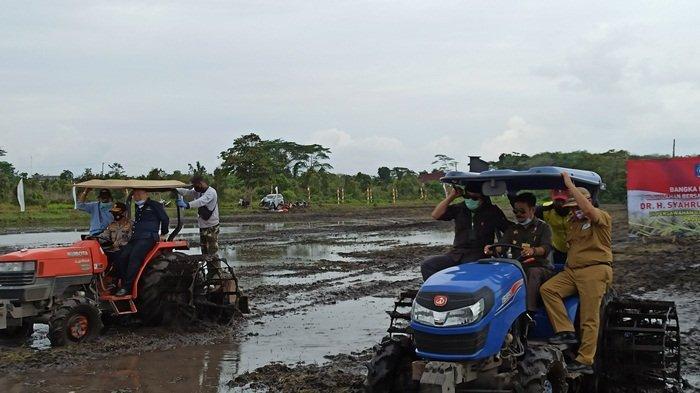 Mentan Ikut Membajak Sawah di Desa Batu Betumpang Lalu Lihat Proses Tanam Padi