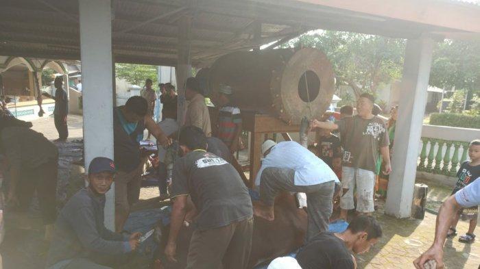Pemdes Air Kuang Tetap Berkurban 2 Sapi Sumbangan Masyarakat di Tengah Pandemi