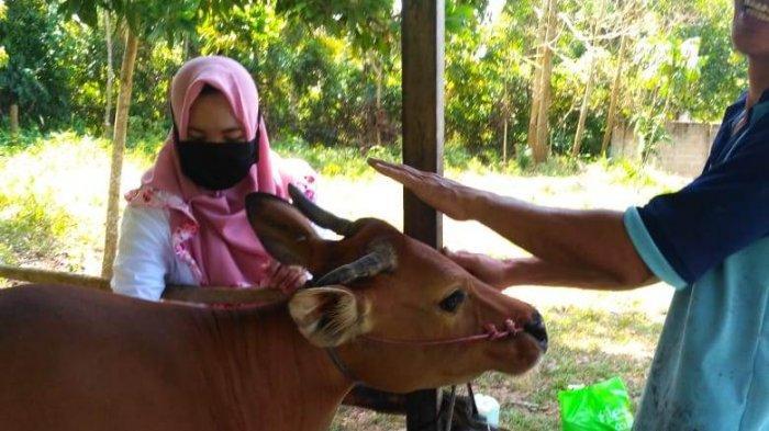 Dokter Hewan Nia Sari, Awalnya Takut  Binatang Kini Malah Jadi Sayang - nia6.jpg