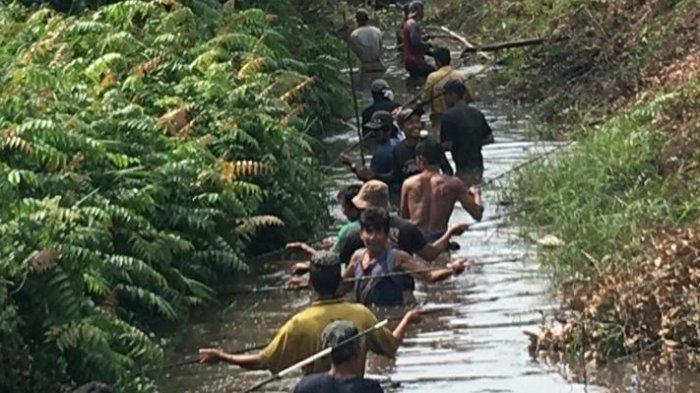 Serunya Tradisi Nirok di Bangka Belitung untuk Lindungi Alam,Menombak Ikan Beramai-ramai