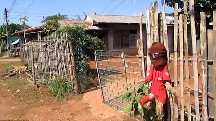 Ada-ada Saja, Usir Arwah Janda Penasaran, Penduduk Desa Ini Malah Pasang Boneka Syur