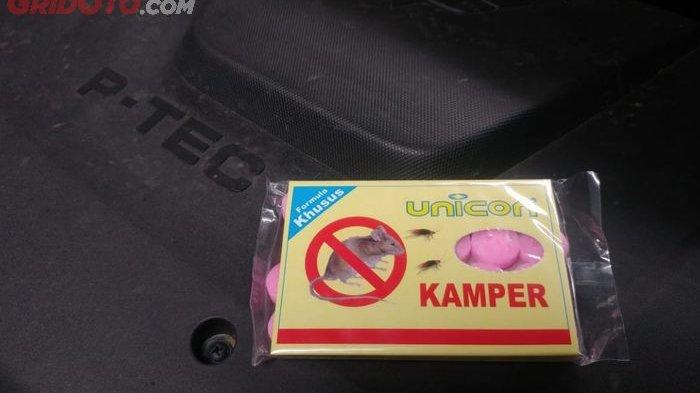 Tips Mudah Cegah Tikus Bersarang di Mobil Saat Jarang Dipakai