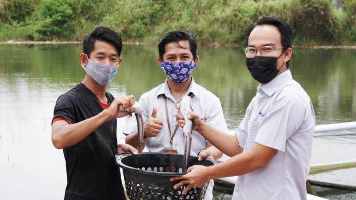PT Timah Berdayakan Masyarakat Manfaatkan Potensi Lokal Lewat Program CSR