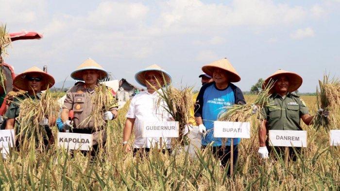 Beltim Dipersiapkan Menjadi Kabupaten Kedua Sebagai Lumbung Padi Provinsi Bangka Belitung