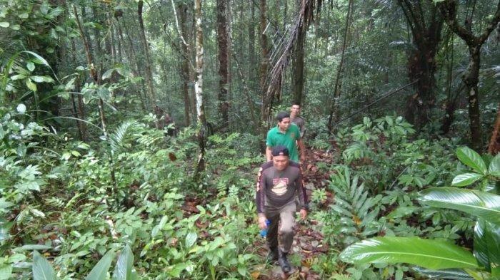 Temuan Tim Gabungan Ini, Tambang Liar di Kaki Bukit Menumbing Beroperasi Malam Hari