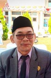 Kepala Dinas Penanaman Modal dan Pelayananan Terpadu Satu Pintu Provinsi Kepulauan Bangka Belitung, Peryanis