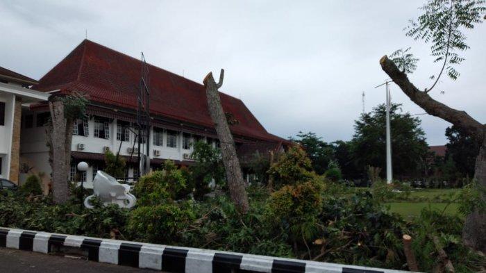 DLH Pangkas Pohon-pohon Peneduh di Halaman Kantor Bupati Bangka