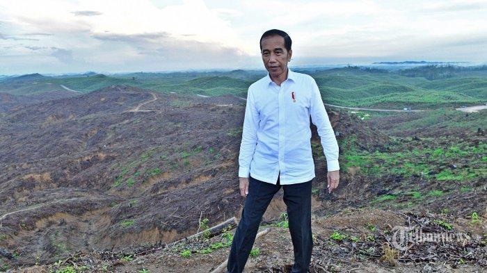 GAMBARAN Ibu Kota Baru Diyakini Presiden Jokowi Masa Depan dan Peradaban Baru, Ini Maksudnya