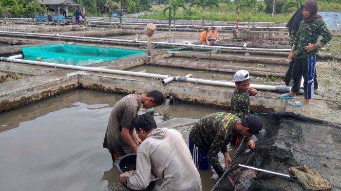Siswa SMK Belajar Penyortiran dan Pendederan Ikan di UPTD Perikanan Bateng