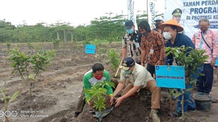 Sinergi Program Agrosolution Klaster Porang dan Jahe, PT Pusri-Pemprov Babel Ajak Petani Diskusi