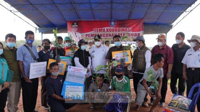 Keluhkan Masalah Hama, Gubernur Bangka Belitung Minta Petani Lakukan Penanaman Serentak