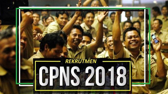 BKN Terbitkan Pengumuman Kelulusan Hasil Tes CPNS 2018, Berikut Daftar Instansinya