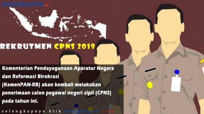 Kabar Gembira, Kemungkinan Oktober Pemerintah Kembali Buka Pendaftaran CPNS 2019, Siapkan Diri Anda