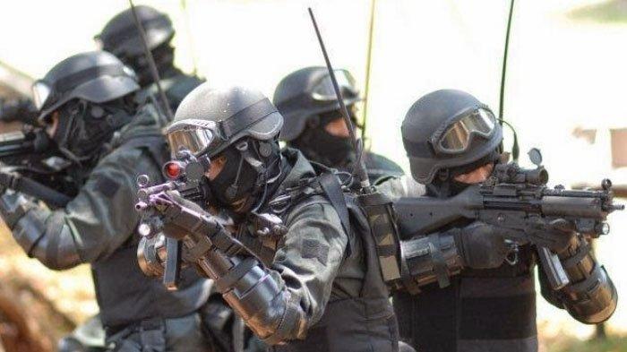 Dilatih Seperti Ini Kopassus TNI Bisa 'Lumpuhkan' Pasukan Khusus Amerika yang Miliki Teknologi Maju