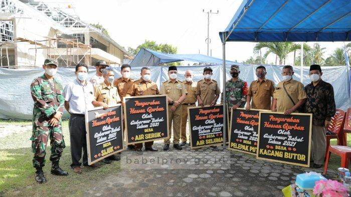 Sambut Idul Adha, Gubernur Bangka Belitung Serahkan Lima Sapi untuk Masyarakat