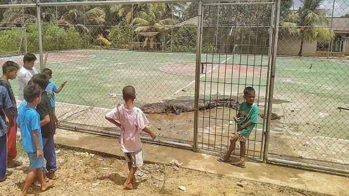 Sekelompok anak-anak melihat seekor buaya berukuran tiga meter lebih yang ditangkap warga Kayubesi.