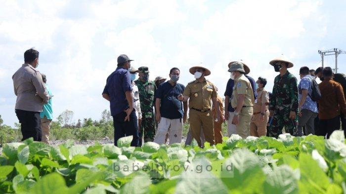 Sambut Budi Daya Kacang-kacangan, Para Petani Desa Danau Nujau Belitung Timur Ikuti Bimtek