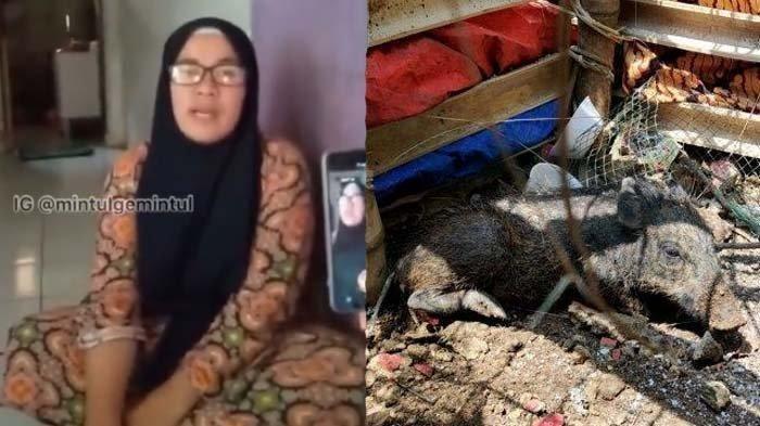Dituduh Babi Ngepet karena Nganggur Tapi Banyak Uang, Seorang Ibu Murka: Saya Bisa Melaporkan