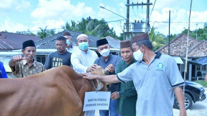 Pemkab Bangka Jangkau Desa di Mendo Barat, Mulkan Serahkan Bantuan Sapi Untuk Kurban