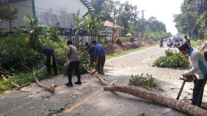 Bhabinkamtibmas Cambai dan Cambai Selatan Pangkas Pohon Bersama Warga