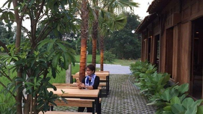 Sensasi Berbeda, Resto di Jogja Ini Sajikan Suasana Buka Puasa dengan Hamparan Sawah Hijau