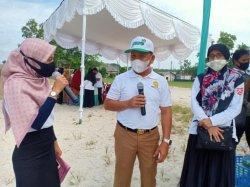 Strategi Pengembangan Komoditi Sagu di Bangka Belitung