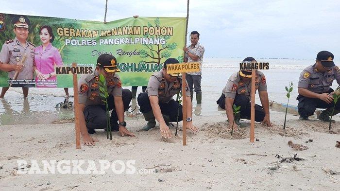 Polres Pangkalpinang Peduli Penghijauan, 300 Mangrove Ditanamkan di Pesisir Pantai