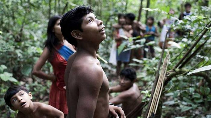 Hidup di Hutan Tak Ada Alat Kesehatan, Tabib Suku Amazon Obati Pasien Covid-19 Pakai Kulit Pohon