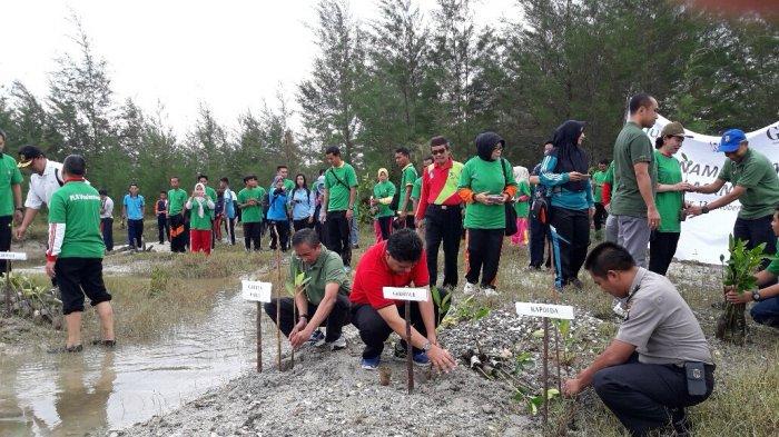 PLN Lakukan Edukasi dan Ekowisata Lewat Penanaman Mangrove