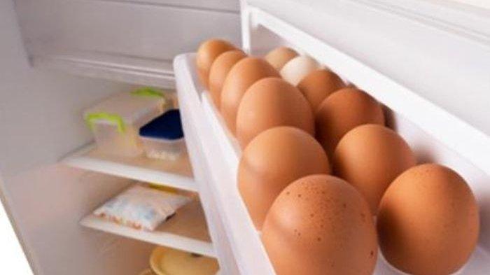 taruh telur di kulkas berbahaya