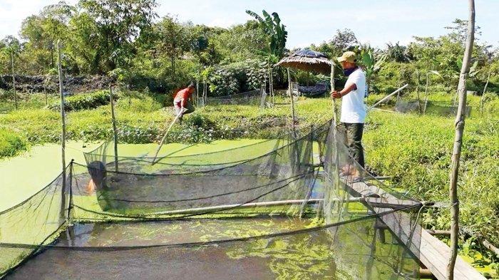 BUMDes Kuang Segandeng Tingkatkan Perekonomian Masyarakat Desa Air Kuang