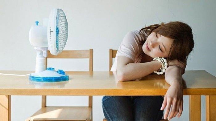 Otak 'Ngecas' Berkat Secangkir Kopi dan Tidur Siang 20 Menit