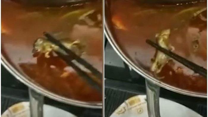 Ibu Hamil Tak Sadar Santap Daging Tikus Mati, Pihak Restoran Tawarkan Rp 10 Juta Gugurkan Kandungan