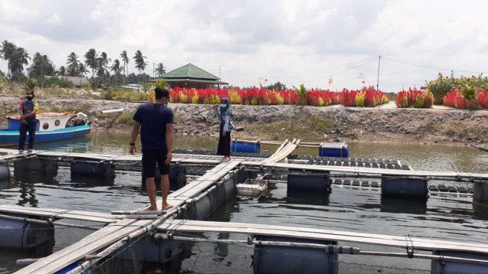 Kelompok Pesona Cahaya Lestari Integrasikan Budidaya Perikanan dan Wisata di Lahan Bekas Tambang