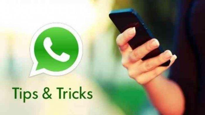 Cara Chatting atau Kirim Pesan WhatsApp Tanpa Menyimpan Nomor Ponsel yang Dikirimi