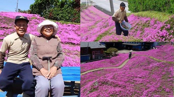 Mengharukan Namun Romantis, Ingin Buat Istrinya Tersenyum, Selama 2 Tahun Kakek Ini Tanam Bunga