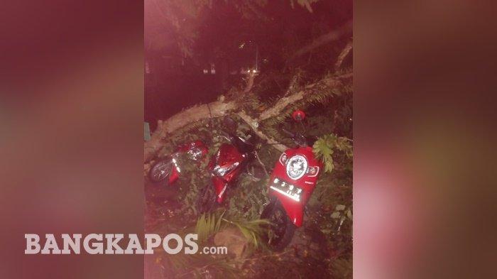 Beberapa motor yang tertimpa dahan pohon yang tumbang di Warkop 99, Senin (5/4/2021) malam.