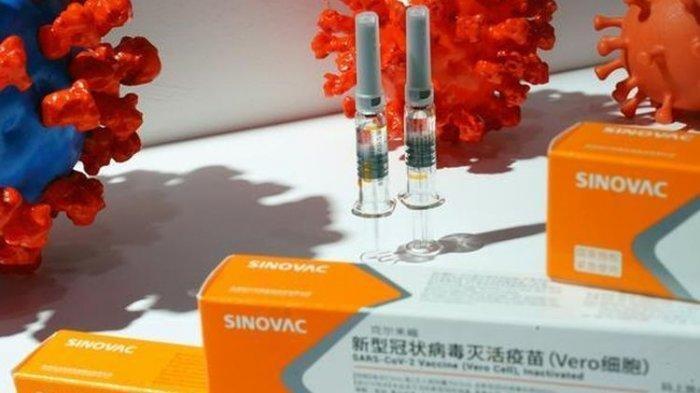 MUI Nyatakan Vaksin Covid-19 Halal dan Suci, Jangan Ragu Ikut Vaksinasi Corona