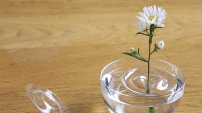 Jadi Hiasan Rumah, Ini Trik Memotong Bunga untuk di Vas