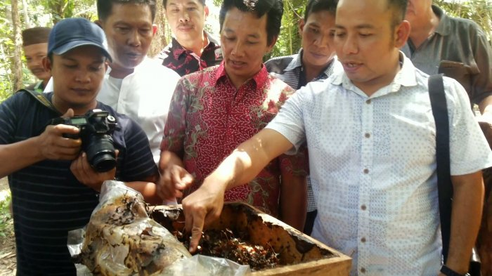 Yo Berwisata ke Sentra Budidaya Lebah dan Penghasil Air Madu Pelakat Limang