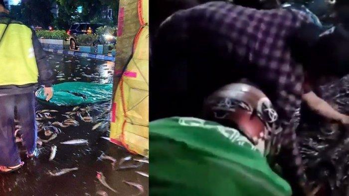 Warga Panen Ikan Lele Berhamburan di Jalan Dikecam, Asalnya dari Truk Kecelakaan