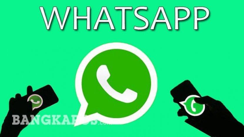 11022020_ilustrasi-whatsapp.jpg