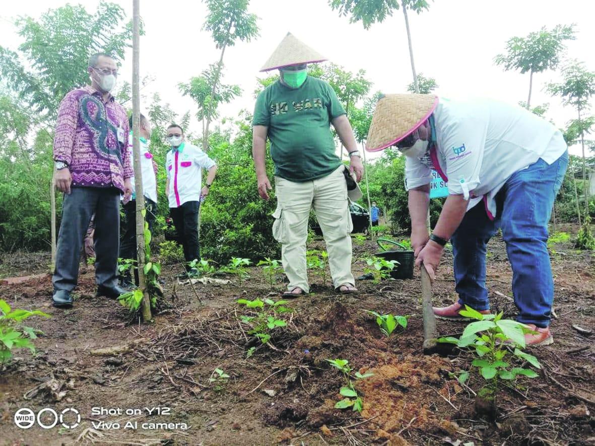 Direktur Utama Bank Sumsel Babel Achmad Syamsudin saat mengunjungi tanaman porang serta ikut menanam porang di Desa Namang Kabupaten Bangka Tengah, Selasa (2/3).