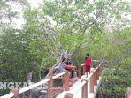 20210728-satu-sisi-akses-jalan-di-kawasan-mangrove-desa-tukak.jpg
