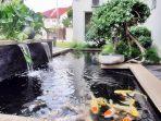 9-langkah-membuat-kolam-ikan-di-rumah-jangan-lupa-beri-garam-dapur.jpg