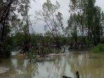 aktifitas-ti-di-das-dan-manggrove-desa-rambat-simpang-teritip_20171117_143509.jpg
