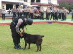 anjing-k9-polda-babel_20170117_192909.jpg