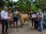 bantuan-sosial-bansos-berupa-satu-ekor-sapi-madura-jantan.jpg